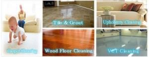 Hardwood Floor Cleaning, Tile and Grout Cleaning , Carpet Cleaning, Upholstery Cleaning, Pet Odor and Urine Removal